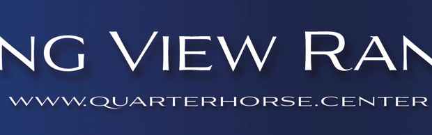 Logo Longview